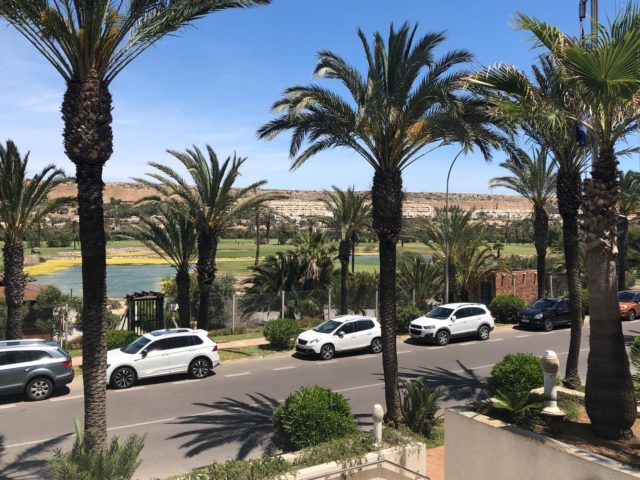 https://www.petanque-england.uk/wp-content/uploads/2019/05/El-Ejido-palm-trees-640x480.jpg